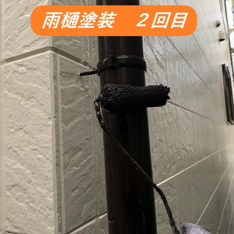 雨樋塗装2回目