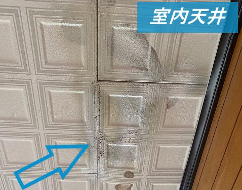 雨漏りした室内の天井