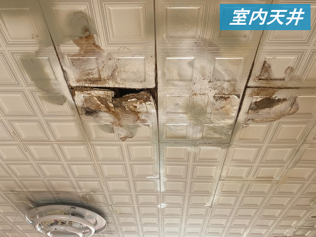 雨漏りによって腐敗した天井