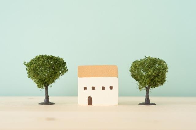小さい家と木