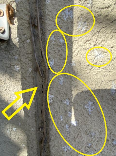 コーキングと外壁の劣化調査