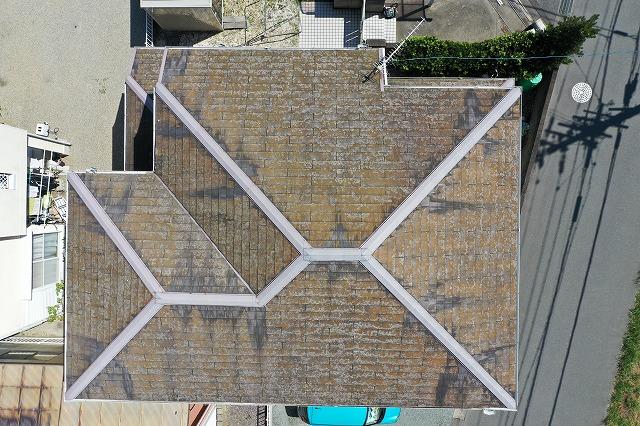 大屋根の空撮写真